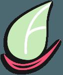 Dental & Cosmetic Solutions logo